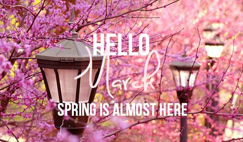 まもなく3月...春はすぐそこ