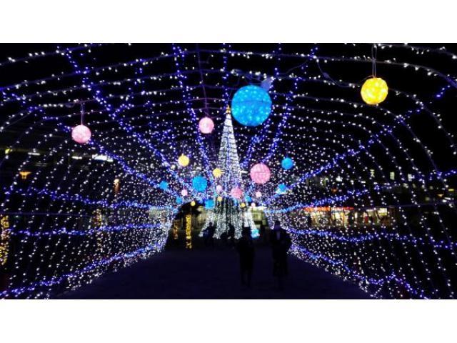 光の祭典.jpg